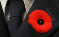 the-future-of-the-poppy