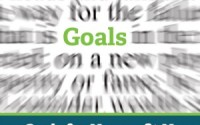 15-02-13 Goals-for-Nonprofit-New-Media-Managers